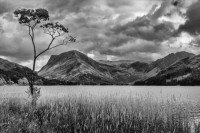 Peter Veale Fleetwith Pike from Buttermere